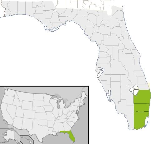 mapa-gris
